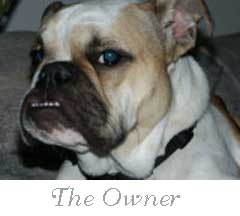 Meet the Owner